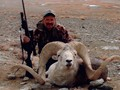 Ackelson traveled to Mongolia to take a spectacular Marco Polo sheep with his Jarrett Rifle.