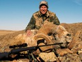Gary Hansen set a new World Record with this fabulous Marco Polo sheep.