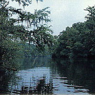 Cowden Plantation's fresh water lakes